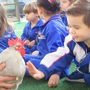 Educação Infantil do Colégio Agostiniano